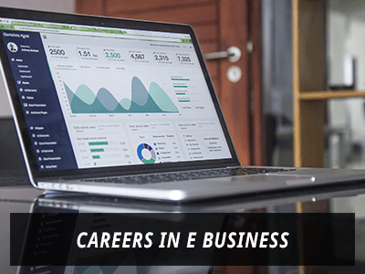 Career in E Business
