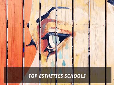 Top Esthetics Schools, Online Top Esthetics Schools